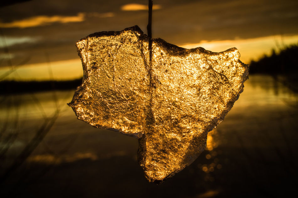this is my texas.... Art Close-up Cold Temperature Day Drop Focus On Foreground Gold Hanging Ice Malephotographerofthemonth Nature No People Outdoors Reflection Sky Sun Sunset Texas Texas Landscape Textile Water Wet Betterlandscapes