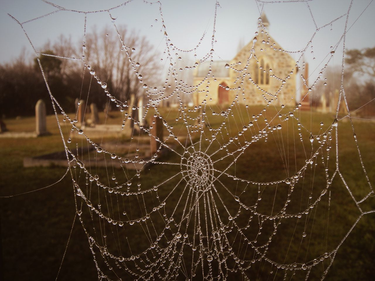 Wet Spider Web Against Church At Cemetery