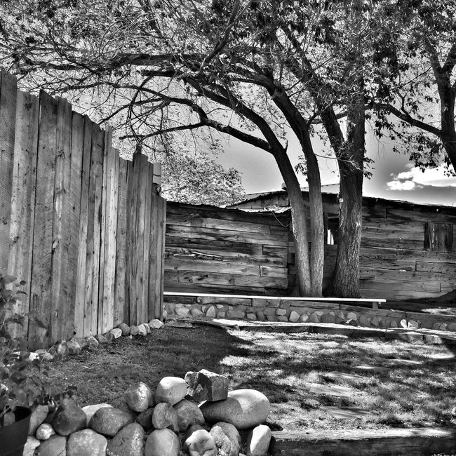 Oasis of Shadows High Contrast Blackandwhite Photography High Altitude Black&white High Desert Blackandwhite Composition Desert Beauty Black & White Monochromatic Black And White Black And White Photography Desert Life Landscape_Collection Monochrome Landscape Texture And Surfaces New Mexico Textures And Surfaces Taking Photos Enjoying Life Check This Out Trees Fences Desert Garden