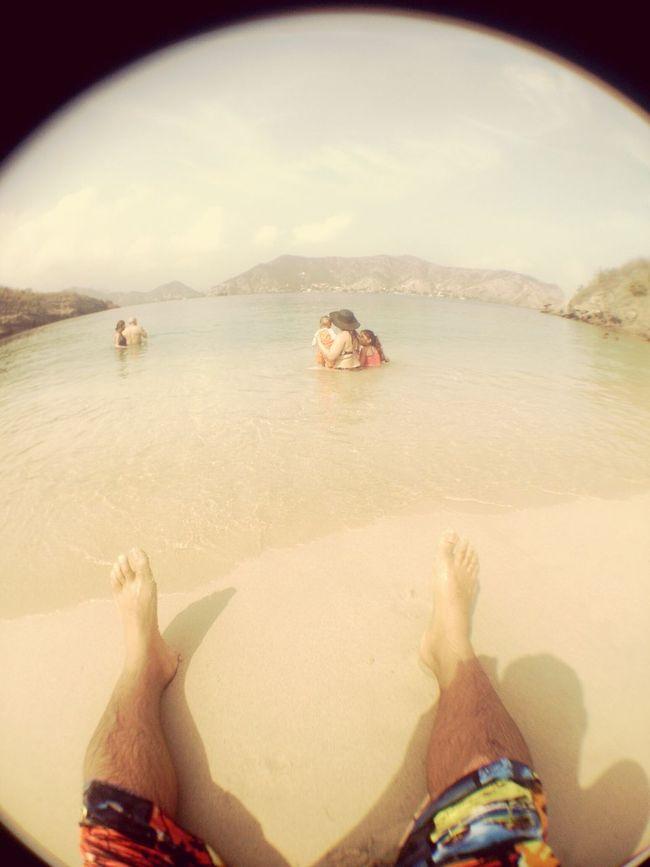 Playas De Venezuela Isla De Plata