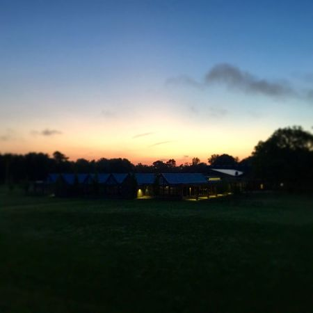 Sunrise over the Field