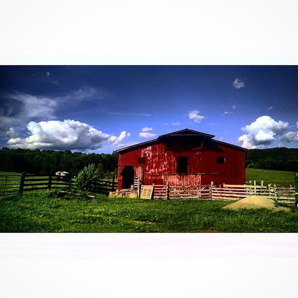 My papaws farm ☺☺ Green Blue White Red Sky Beautiful Barn Redbarn Farm Memories Loveit Country Animals Scenery Clouds Nature Old Vintage Faded Instagood Justalittlephoto