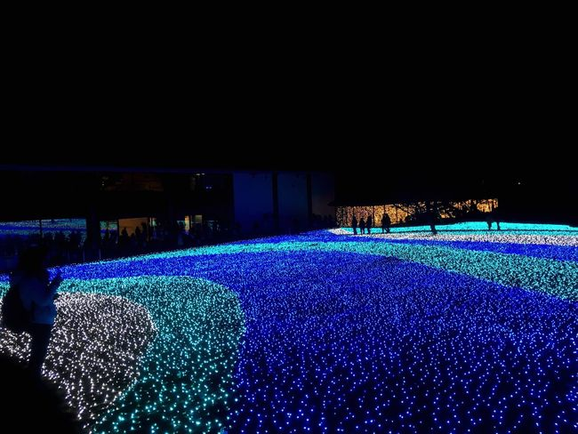 なら瑠璃絵 Illumination Blue Nara,Japan