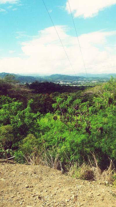 Jungle Time Jungle Gurabo, Pr Hiking