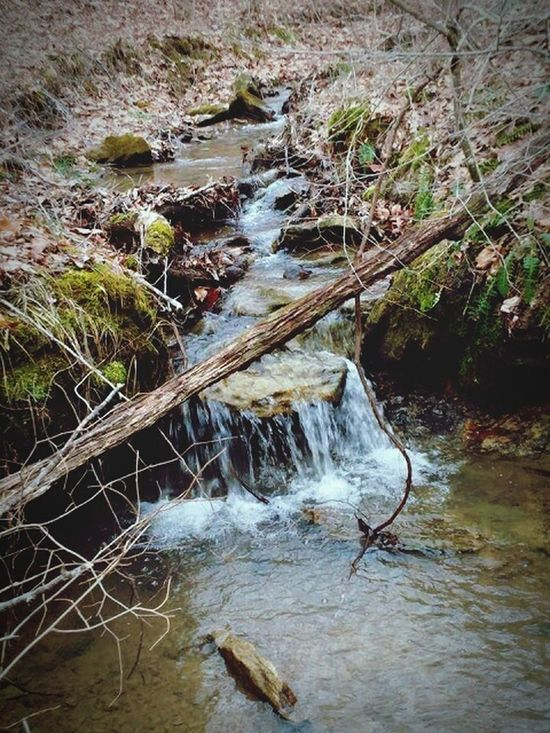Creek Relaxingwaters Relaxing Beautufulwiew Beauty In Nature