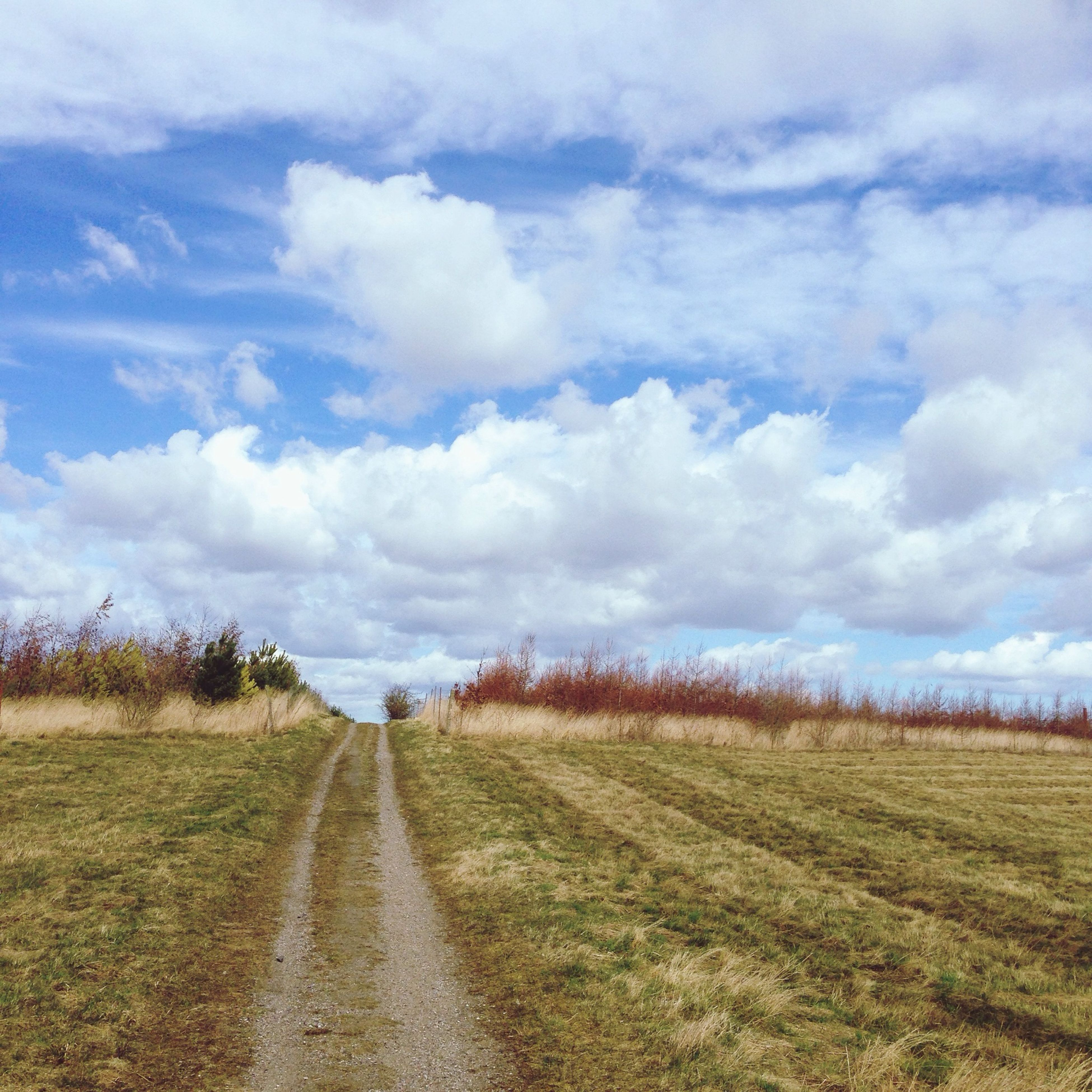 sky, field, landscape, grass, the way forward, cloud - sky, tranquil scene, tranquility, rural scene, agriculture, cloudy, nature, cloud, dirt road, diminishing perspective, scenics, growth, beauty in nature, grassy, farm