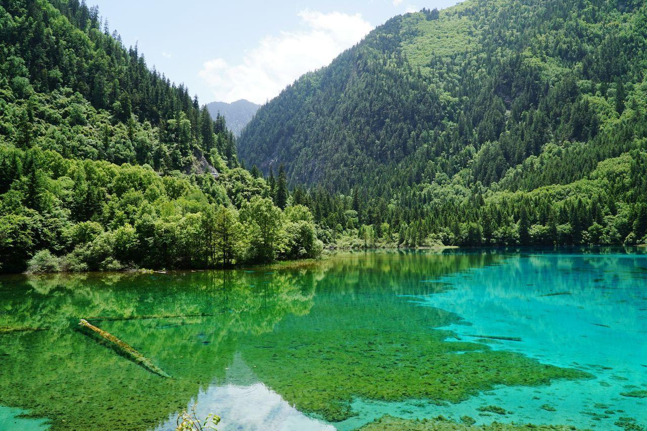 Beautiful stock photos of lake, Beauty In Nature, Day, Idyllic, Lake