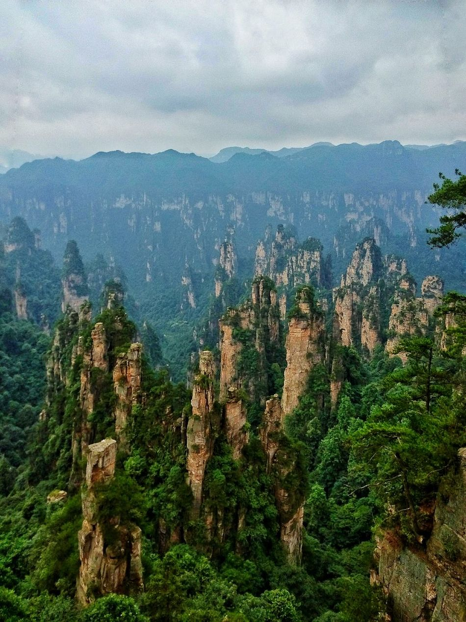 View From High Avatar Mountain Landscape Zhangjiajie China Travel Mountains Great View Nature Photography Geography