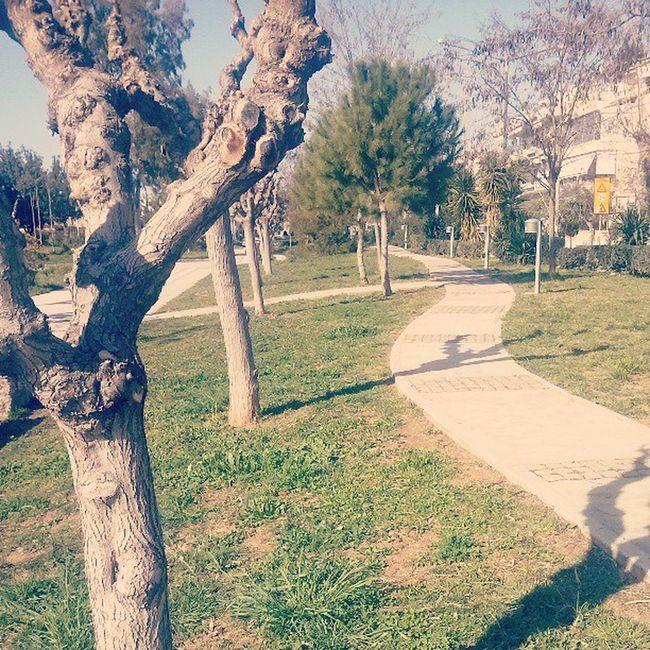 Arxi Polikladikon Argiroupoli Ilioupoli