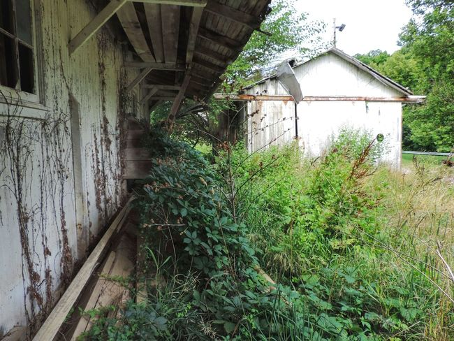 Barn Built Structure Deterioration Exterior Grass Growth Nature No People Ohio Old Outdoors Overgrown Plant Run-down Rural Exploration Rural Scene Rurex