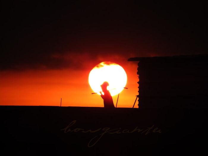 Borgiante Ciudad De México Mexico Mexico City Sol Sun Work Workman