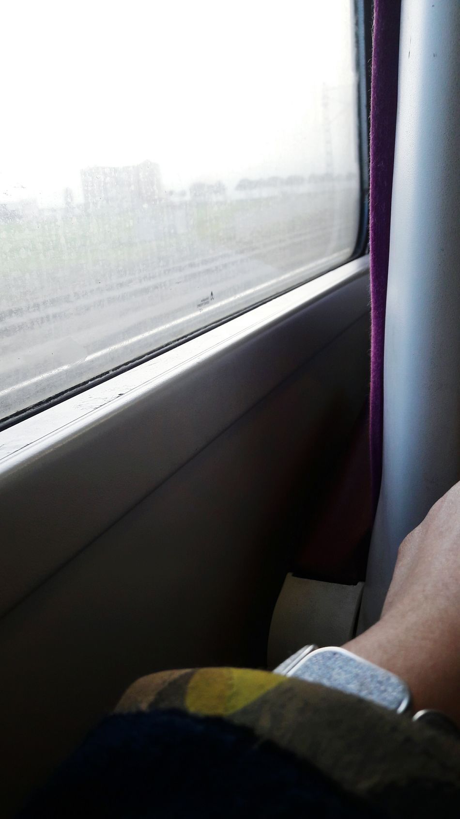Train_of_our_world Journey Day Train - Vehicle Transportation Window Travel Vehicle Seat Vehicle Interior Sitting Public Transportation Close-up Adults Only Train Interior Indoors  People