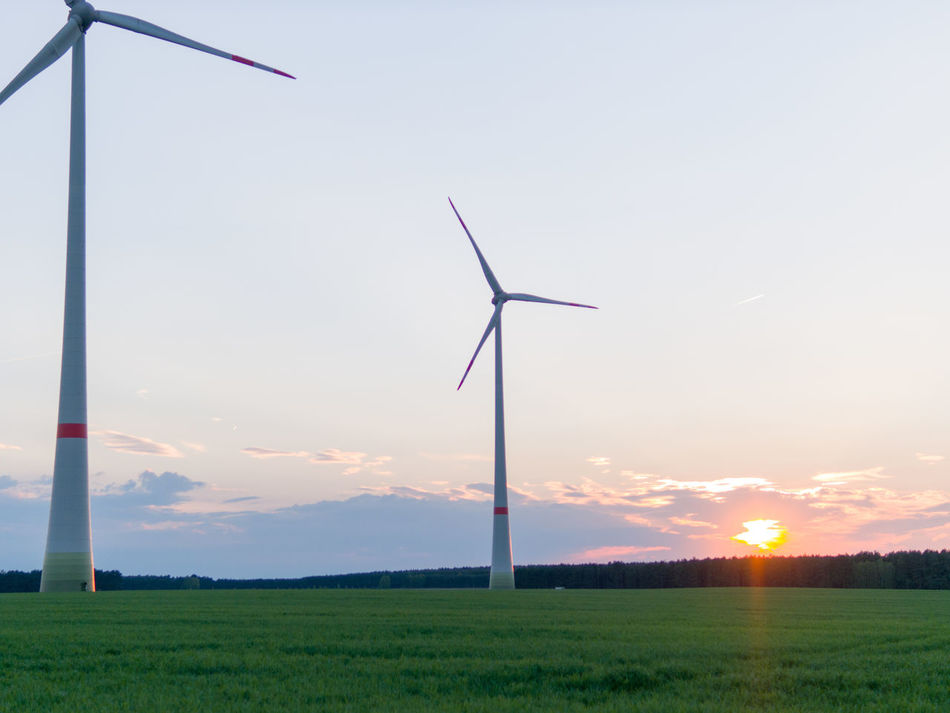 Agriculture Alternative Energy Beauty In Nature Brandenburg Day Electricity  Environmental Conservation Feldheim Field Fuel And Power Generation Grass Industrial Windmill Landscape Nature No People Outdoors Renewable Energy Rural Scene Sky Sunset Technology Treuenbrietzen Wind Power Wind Turbine Windmill