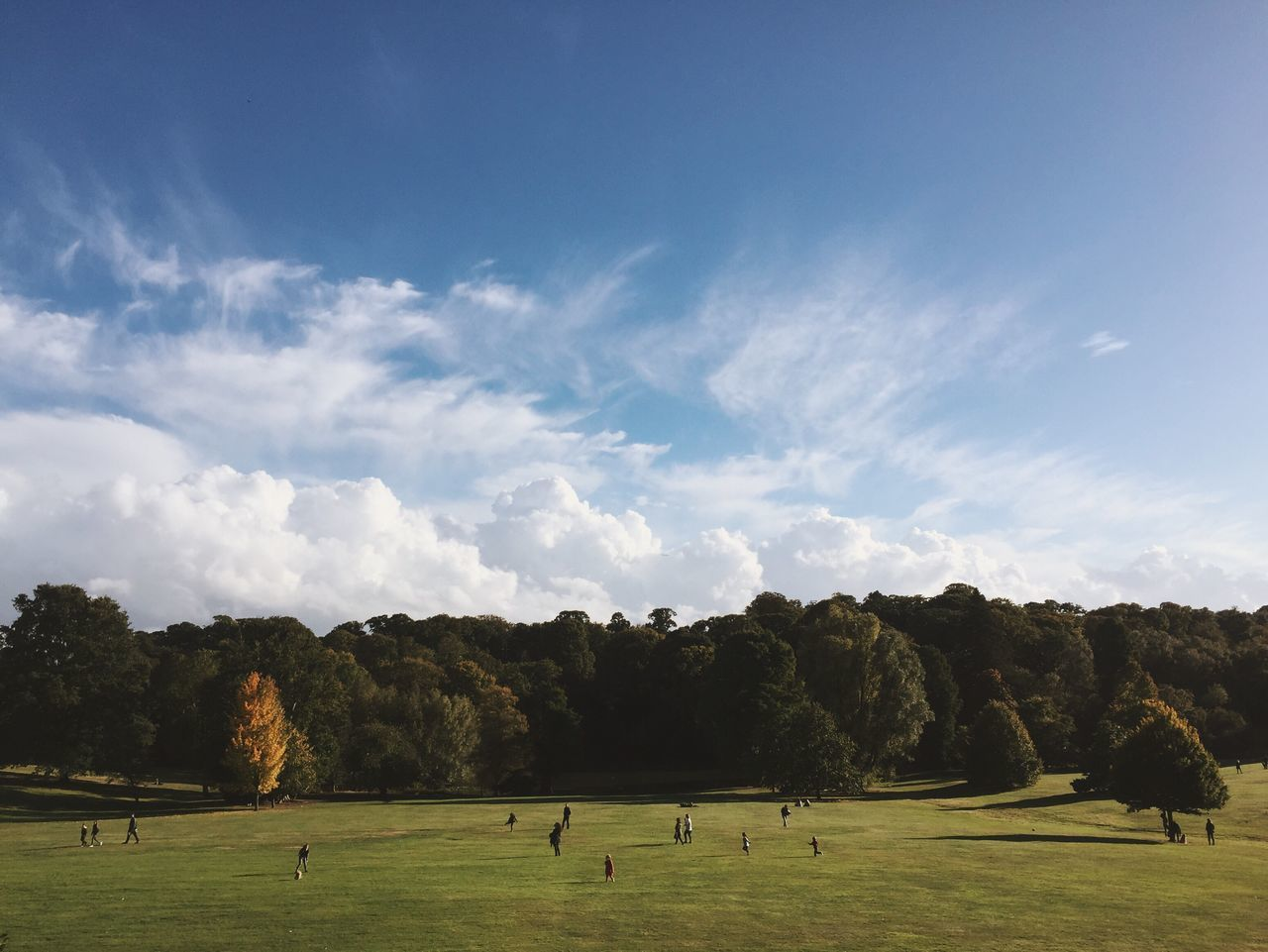 Kenwood House grounds at Hampstead Heath. Grass Tree Nature Landscape Green Color Cloud - Sky Sky Domestic Animals Outdoors Real People Animal Themes Beauty In Nature Day Grass Hampstead Heath London Autumn Many People Weekend Activities big Sky