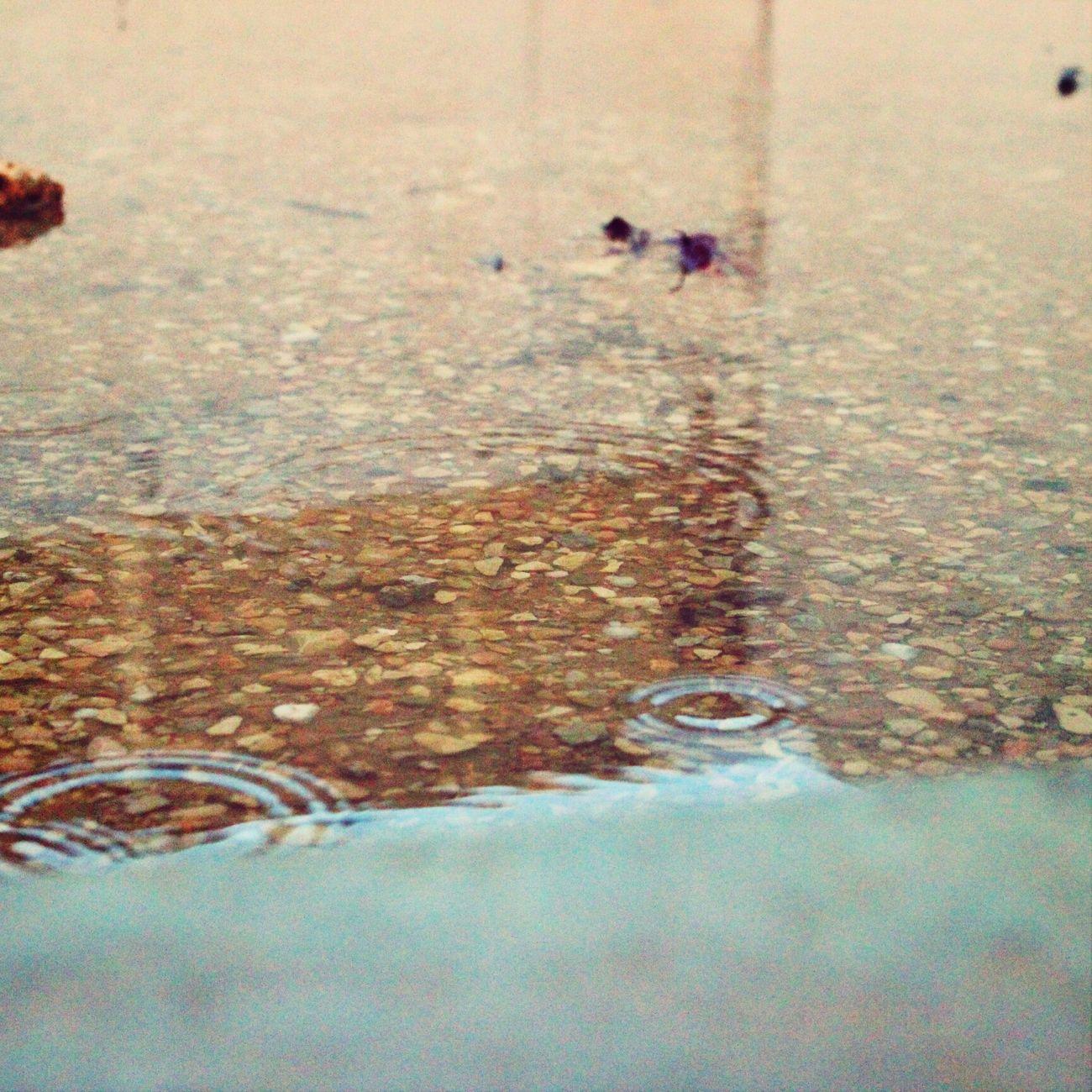 يوم الامطار