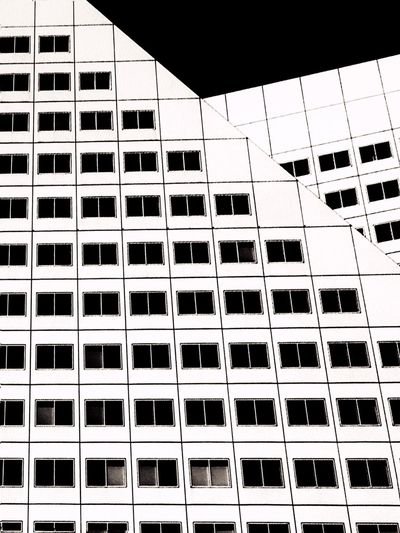 Rotterdam City Architectural Detail Architecture The Graphic City