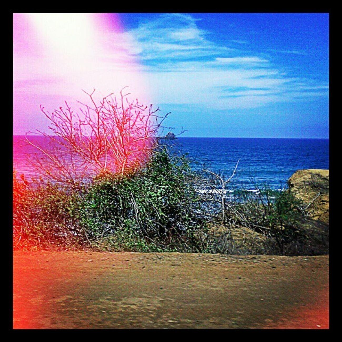 Spondylus Road Manabí Ecuador Love Landscape Instagood Beach