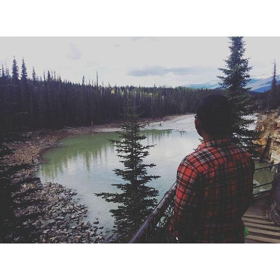 @roghocom I can see an India bear in Jasper 🐻🌲🌄 Mountain Alberta Wildernessculture Explorecanada Explor Enjoyoutdoors Rockies Themountainsarecalling Theoutbound Liveoutdoors Lifeiscalling LiveYourAdventure Findyourparadise