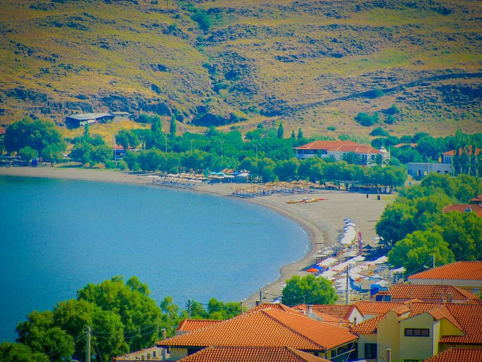 Village Greek Village Houses Village Houses Roofs Red Roofs Beach Beach Photography Life Is A Beach Seaside Village Seaside Seascape Shades Of Blue Blues Petra Lesvos Island Greek Islands Trees Landscape Landscapes Landscape_Collection Trees And Village Summer Views Summer Memories 🌄
