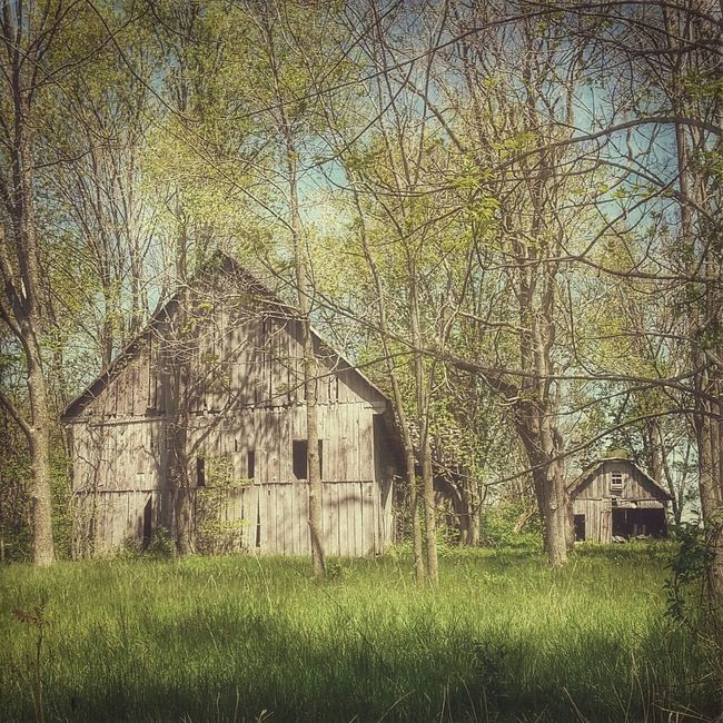Rural Exploration Barnaholics Old Barn Barnstalker Ruralphotography Eye4photography  Spring Countryside Ruralamerica Barn