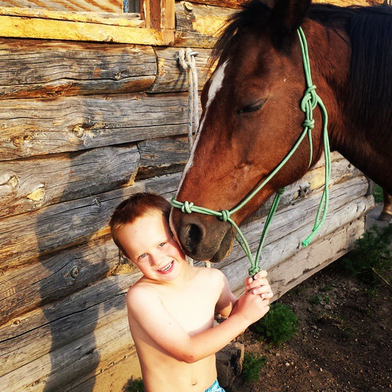 Overwhelmingly proud of my little cowboy! Ryleecarlos Cowboyintraining Mylittlecowboy Farmlife Countryboy Tetonvalley Idahogram Onlyinidaho Morgans Horse Horsesofinstagram Cowboy Proudmama Hesonlyfive Papasboy
