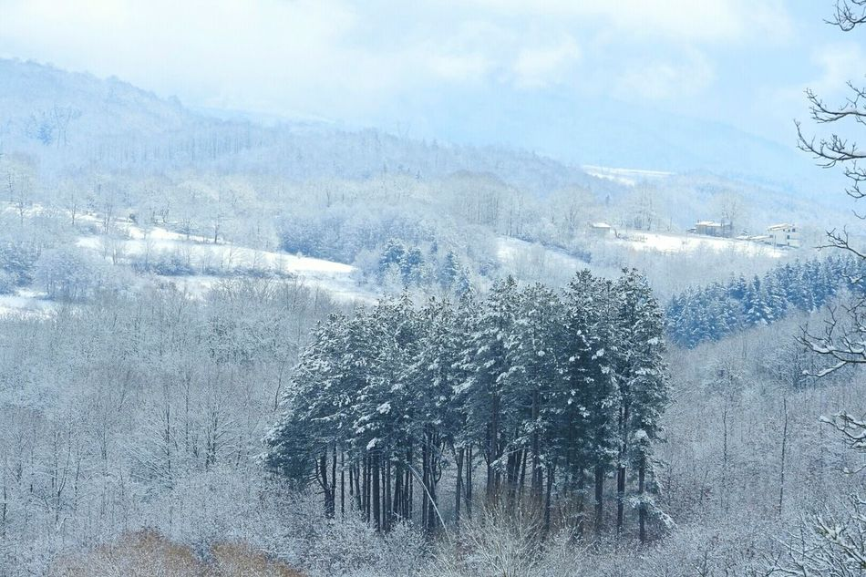 Winter days Winter Cold Temperature Snow Nature Weather Landscape Mountain Snowing Tree Natural Phenomenon Taking Photos Taking Pictures Snow❄⛄ Mountain Landscape Mountainscape My Village. Snow Day ❄ Snow Mountain Snowscape