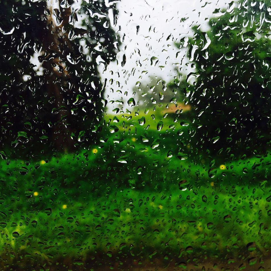 Break The Mold Behind The Scene Mysterious Rainy Days Raindrops Through The Glass Window Rainy Weather Raining Outside