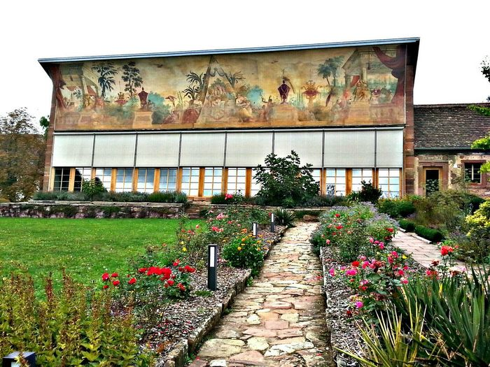 """Cistercian Abbey """"Kloster Bronnbach"""", This Orangerie building, is a former greenhouse now a restaurant. Abbey Cloister Greenhouse Flowers"""