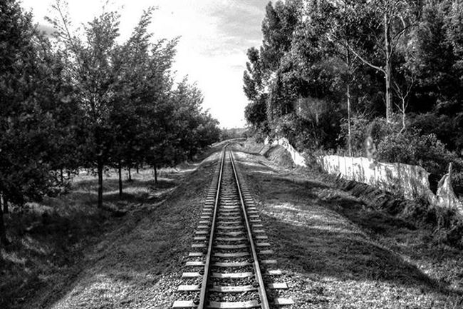Looking Backward Instatravel Travelgram Railroad Bw Colombia OMDP 29 -365 IgColombia Ig_bogota_ Ig_colombia @colorsoftheweek @ig_colombia @igersbogota @igerscolombia