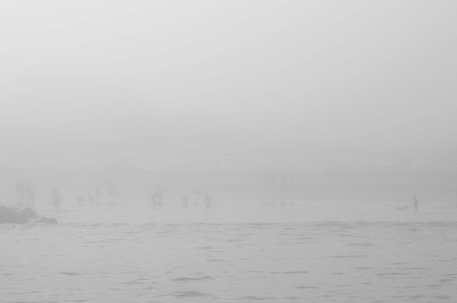 Atmosphere Beauty In Nature Calm Cold Temperature Day Ethereal Fog Foggy Hout Bay Beach Majestic Mist Misty Nature Non-urban Scene Remote Scenics Snow Covered Solitude Tranquil Scene Tranquility Vacations Water Waterfront Weather Winter
