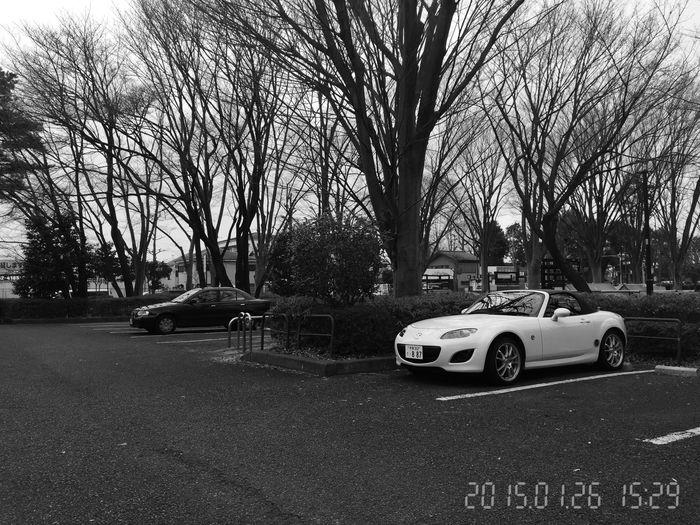 MUSASHINO-Park TOKYO http://youtu.be/WHNVkKxUG9Q MazdaMaita Roadster