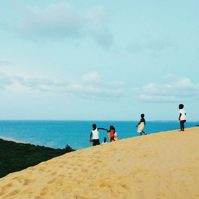 Sand Dune Sea Forest Sunset in Vilankulo Mozambique Nature
