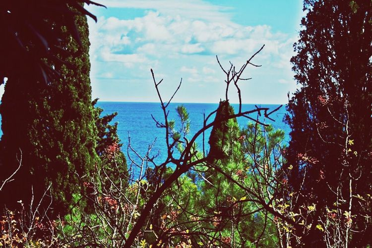Kırım gezisi Kırım Sivastopol Liman Deniz