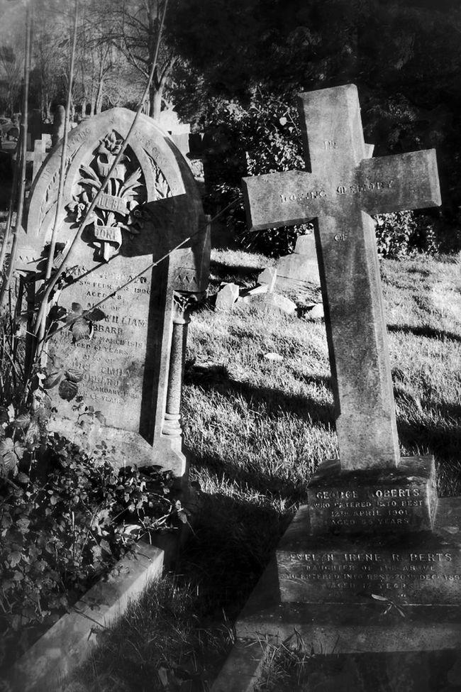 Dark Photography Darkart Bw_collection My Unique Style Photography Cemetery Graveyard Beauty Monochrome Black&white Blancoynegro