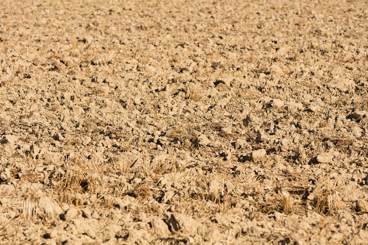 Agricultural Land Agriculture Brown Field Full Frame Plowed Plowed Field Soil