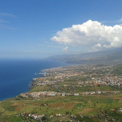 Feliz día de Canarias! Tenerife Norte LosRealejos Canarias Canariasviva Tenerifelicidad Lovecanarias