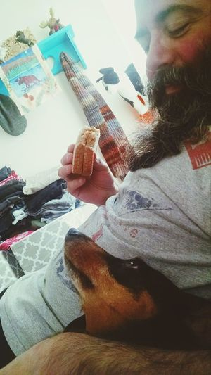 Are You Gonna Eat That Whole Sandwich?? All Eyes On You Sandwich One Bite Please Daddy's Girl Indoors  Foodphotography One Person One Dog Doxie Moxie Domestic Animals