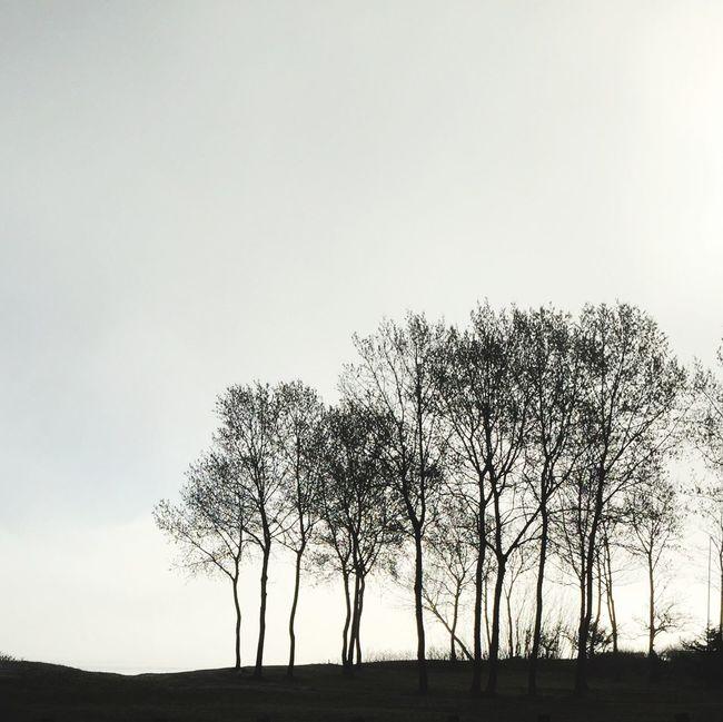 Landscape_photography AMPt - Minimalism Silhouettes EyeEm Nature Lover