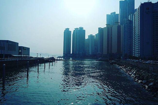 해운대 부산 Busan 바다 일상 데일리 사진 여행 일상공유 맞팔 Sotong 미러리스카메라 Follow Followme Photo Travel Daily Southkorea