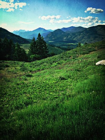 Checking In Valley Methow Valley