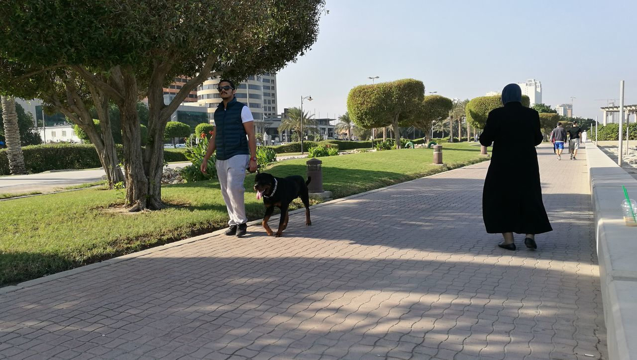 Snap A Stranger Man Walking With Dog Sunlight Leisure Activity Park - Man Made Space Outdoors Real People Nature Sky Lifestyles Strangelooking Clear Sky Grass Trees Green Nature Women With Scarf Life Style Daytime Scenics Beauty In Nature