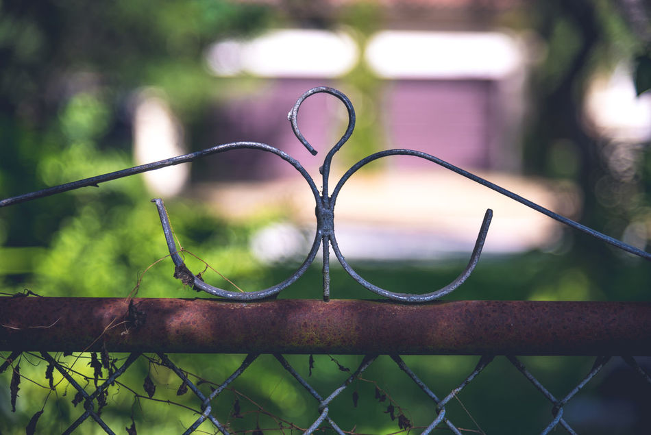 Art Is Everywhere Close-up Day Fence Focus On Foreground Garden Metal Nature Nature Nature Photography Nature_collection No People Ornamental Garden Outdoors Selective Focus Tranquility