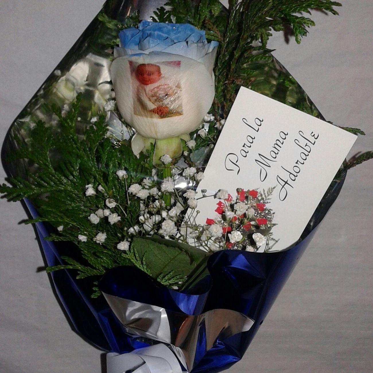 Rosa natural con los filos de los petalos en azul y un bebe tatuado en el petalo Rosas Azules Flowers Blue Rose Regalo De Aniversario RegaloDeCumpleaños Regalodemama Regalo Especial Cumpleaños♥ Rosas Bonitas❤️🌹 Rosas De San Jordi Porfin Una Azul