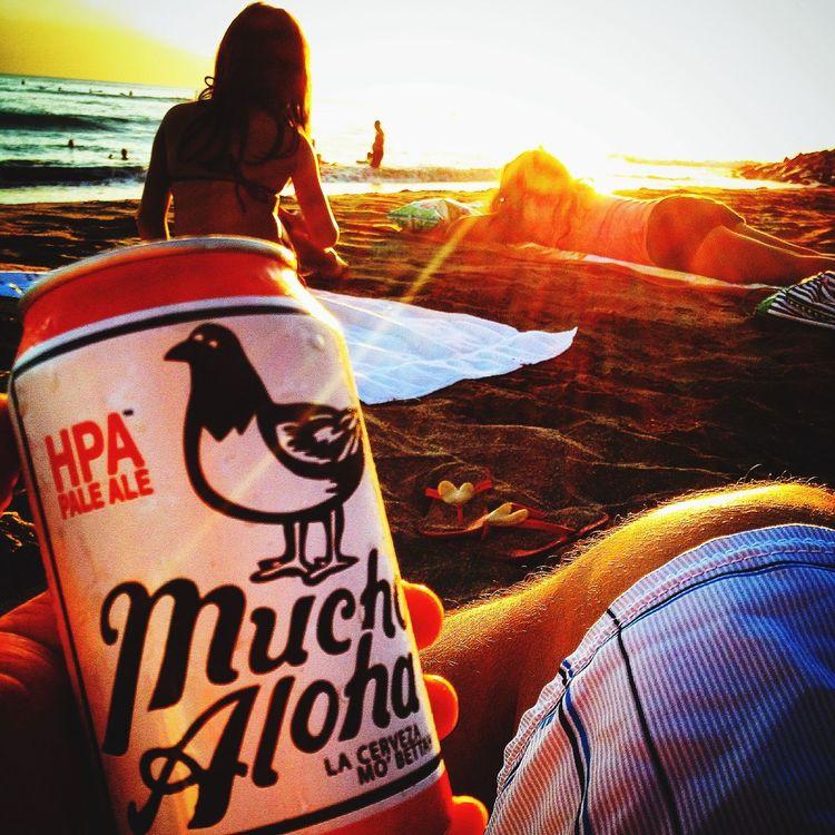 Sunset Beach Relaxing Drinking