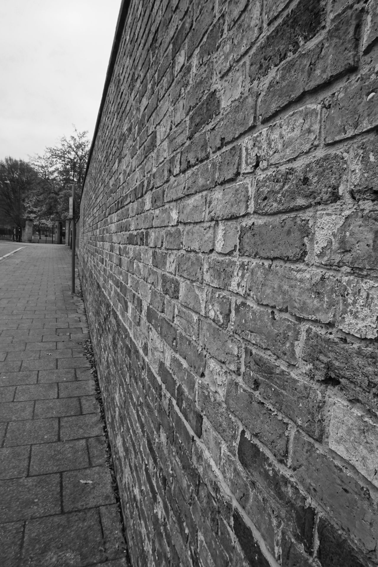 8023 Architecture Black & White Black And White Black And White Photography Black&white Blackandwhite Blackandwhite Photography Brick Wall Brickwall Built Structure Day Diminishing Perspective No People Outdoors Path Pathway Sky The Way Forward Trees The Architect - 2017 EyeEm Awards The Architect - 2017 EyeEm Awards