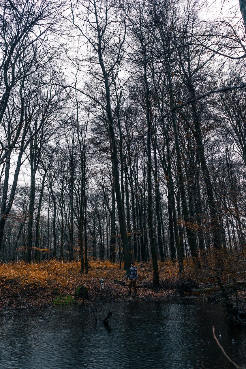 tree, bare tree, nature, real people, leisure activity, outdoors, one person, day, forest, tranquility, water, full length, scenics, beauty in nature, standing, adventure, men, branch, sky, people