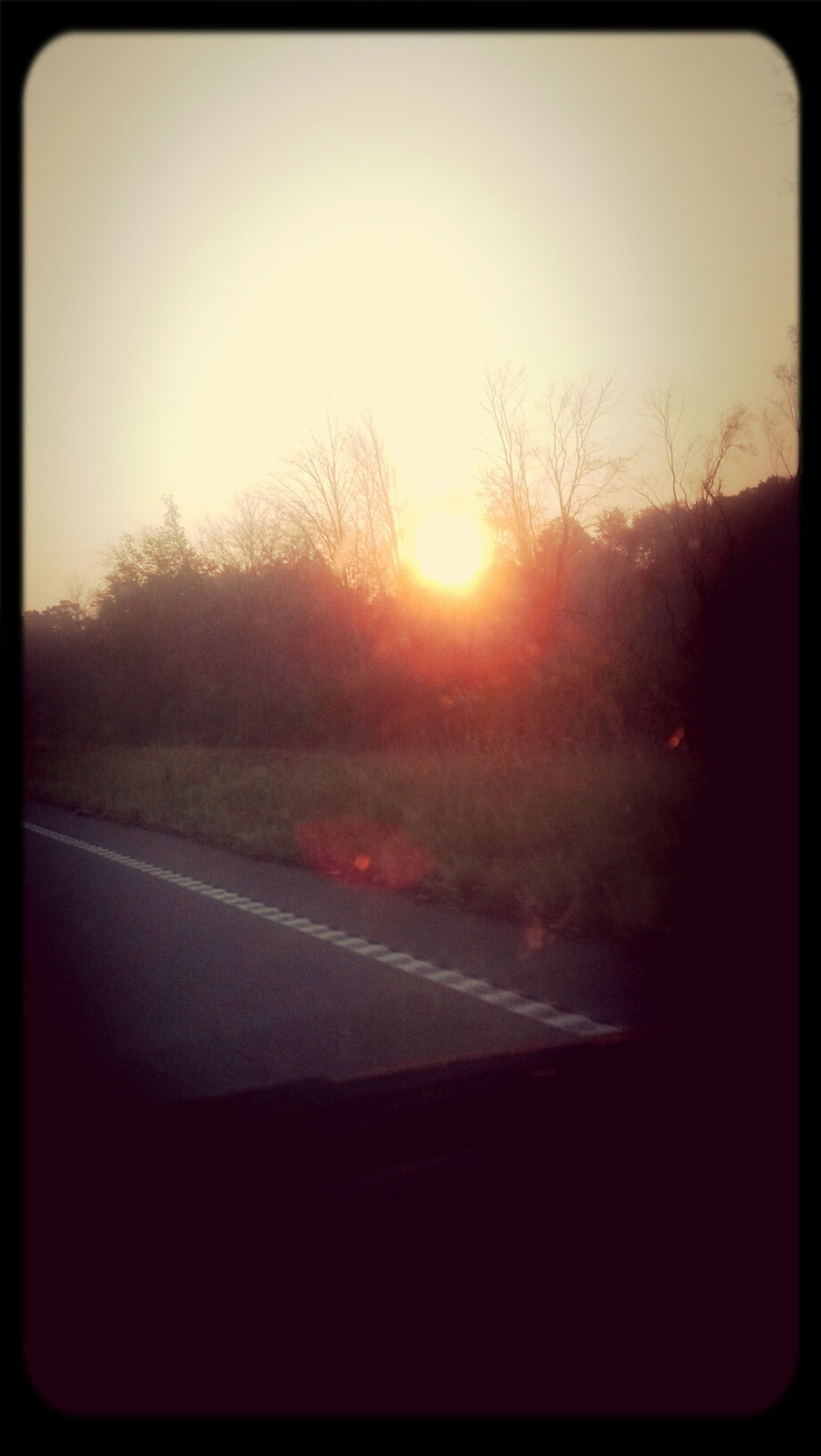 sunset, transfer print, sun, transportation, road, tree, auto post production filter, sunlight, sky, silhouette, tranquility, sunbeam, clear sky, tranquil scene, the way forward, nature, road marking, scenics, lens flare, country road