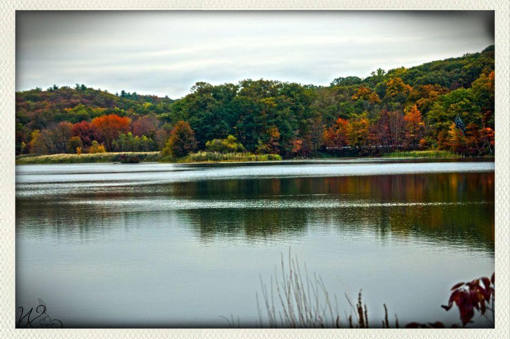Tcwphotography.com Hello World Fall Leaves Autumn