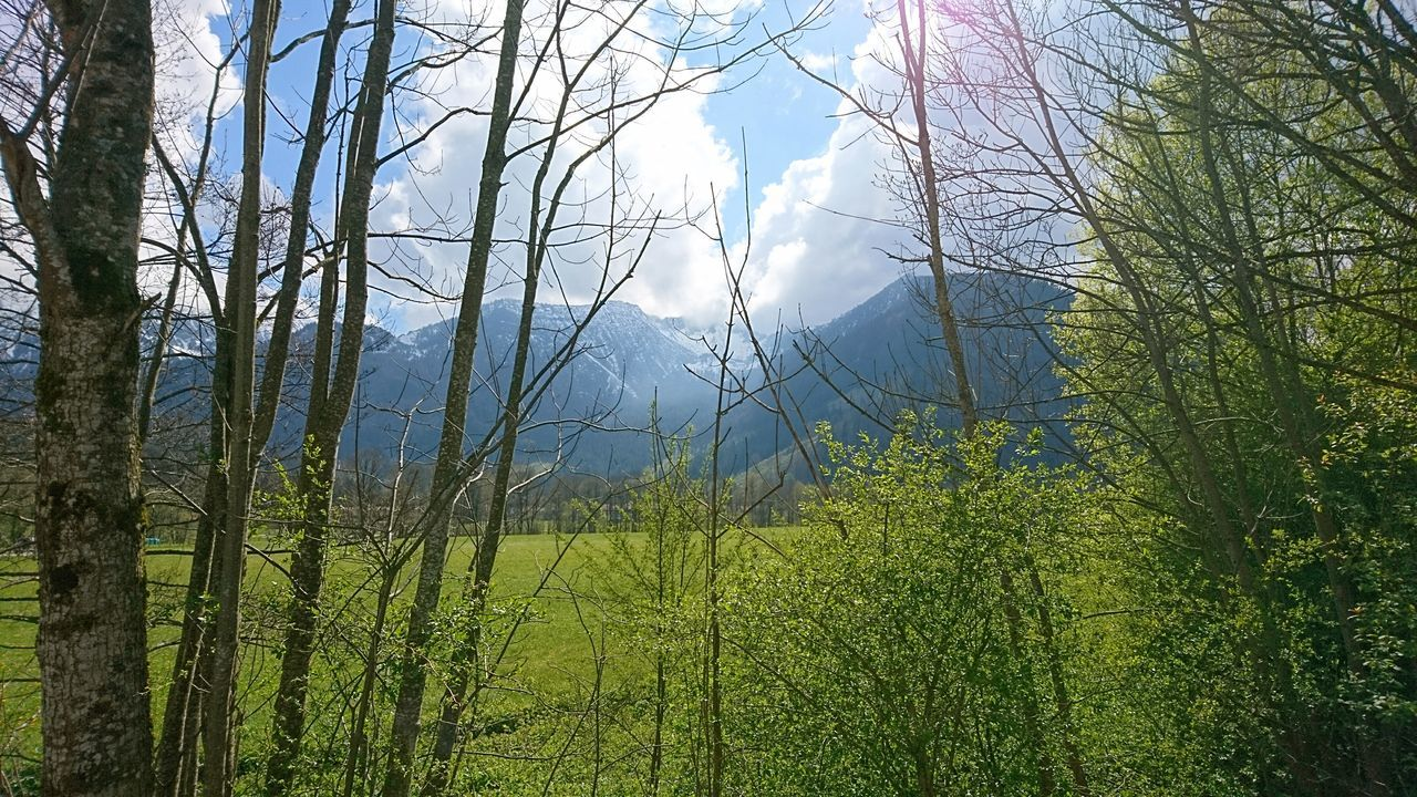 Alpine foreland near Geitau. · Geitau Germany Bavaria Alps Alpine Foreland Alpine Foothills Alpenvorland Mountains Nature Landscape Clouds Clouds And Sky Trees Framed By Trees Green Blue Beautiful Day