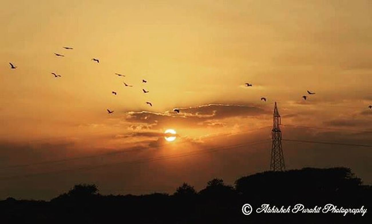 Keep looking up! I learn from the past, dream about the future and look up. There's nothing like a beautiful sunset to end a healthy day. beautiful sun in clouds making superb silhouette of spoonbill birds flight Photographie  Rajasthan Like4like Bluecity Photowalk Ithappensonlyinindia Jodhpuri Randomness Travel Concept Indian India Like4like Igersjodhpur Pic GoldenHours Sunrise Deasert  Oasis Sun Landscape Frame Lovetraveling Randomness DSLR nikon nikonian nikonindia nikonindiaofficial